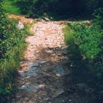 Горски път 1